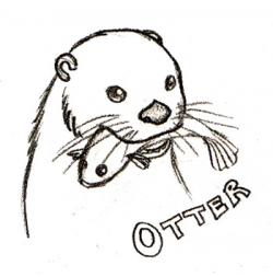 Drawn otter doodle