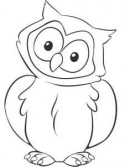 Drawn owlet