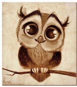 Drawn owlet baby owl