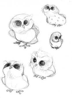 Drawn owlet cute