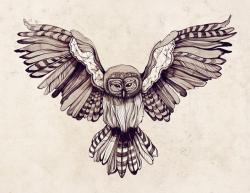 Drawn bird spread wing