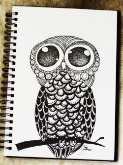 Drawn owlet doodle