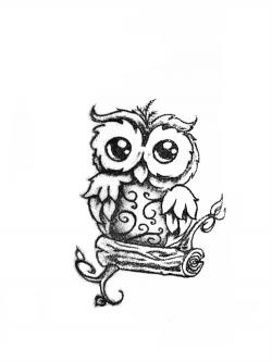 Drawn owlet cute tribal owl