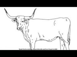 Drawn ox