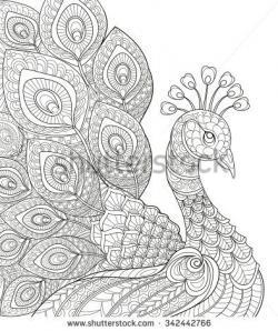 Drawn peafowl coloring book