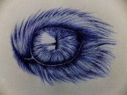 Drawn blue eyes ballpoint pen