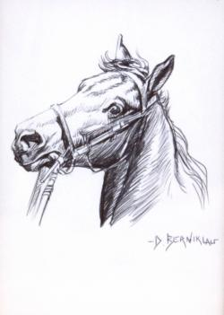 Drawn pen horse
