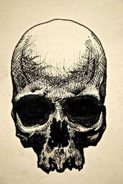 Drawn pen skull