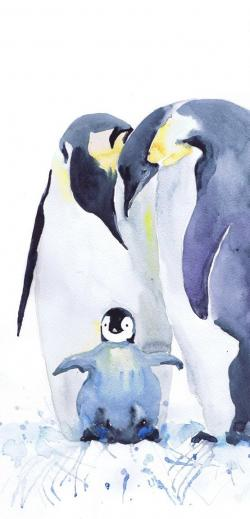 Antarctica clipart painting