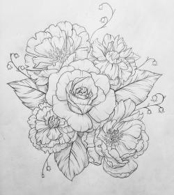 Drawn peony carnation flower