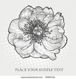Drawn peony flower bucket