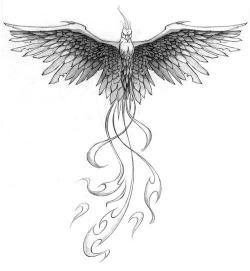 Drawn phoenix