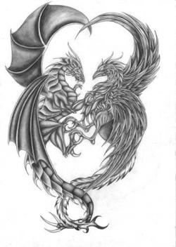 Drawn phoenix Drawn Dragon