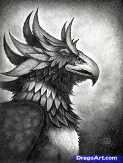 Drawn griffon griffin head