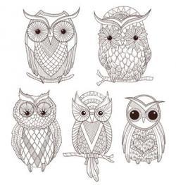 Drawn owlet artsy