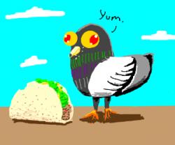 Drawn pidgeons chibi