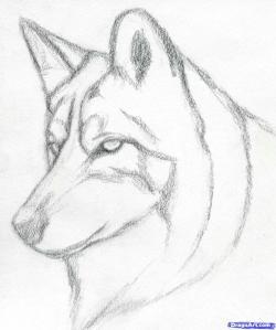 Drawn husky simple