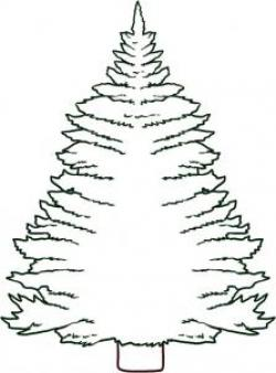 Drawn pine tree