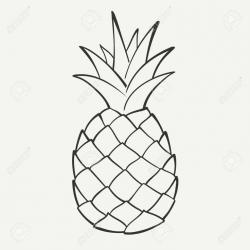 Drawn pineapple