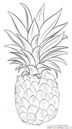 Drawn pineapple basic