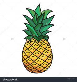 Drawn pineapple cartoon