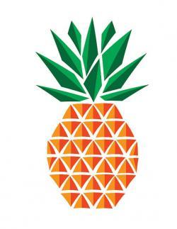 Drawn pineapple graphic