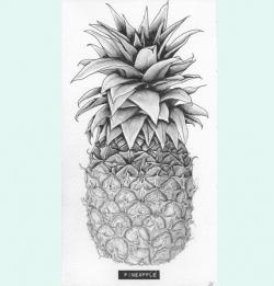 Drawn pineapple pencil drawing