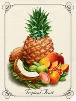 Drawn pineapple tropical fruit