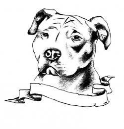 Drawn pitbull black and white