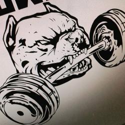 Drawn pitbull bodybuilding