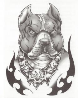Drawn pitbull gangster