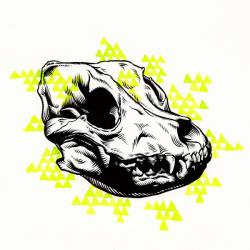 Drawn pitbull skull