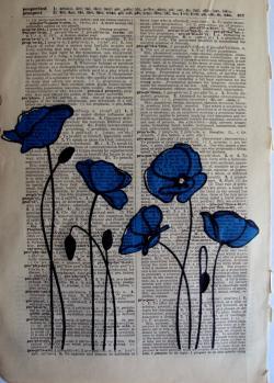 Drawn poppy blue poppy