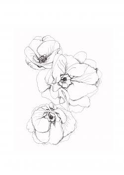 Petunia clipart tumblr flower