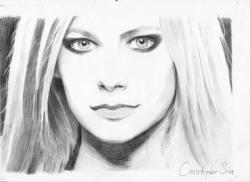 Drawn pencil portrait drawing