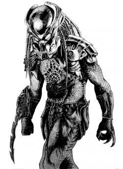 Drawn predator berserker