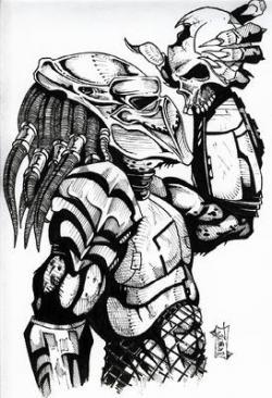 Drawn predator skull