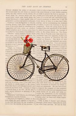 Drawn pushbike old bicycle