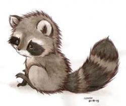 Drawn raccoon cute