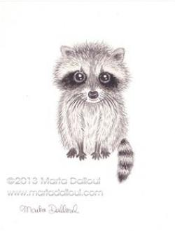 Drawn racoon cute