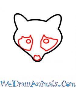 Drawn raccoon easy