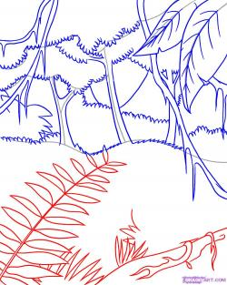 Drawn foliage rainforest