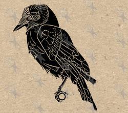 Drawn crow art nouveau