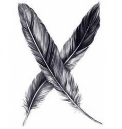 Drawn feather raven feather