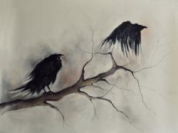 Drawn raven shadow