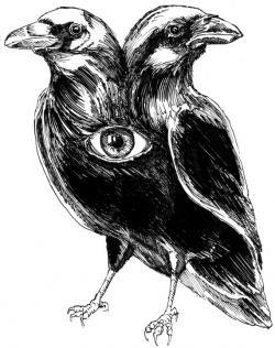 Drawn raven two headed