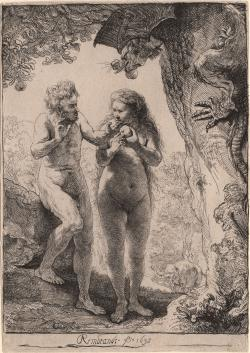 Drawn rennaisance adam and eve