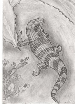Drawn reptile