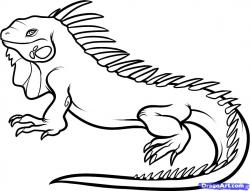 Green Iguana clipart simple
