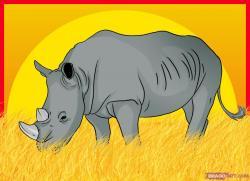 Drawn rhino rhinoceros